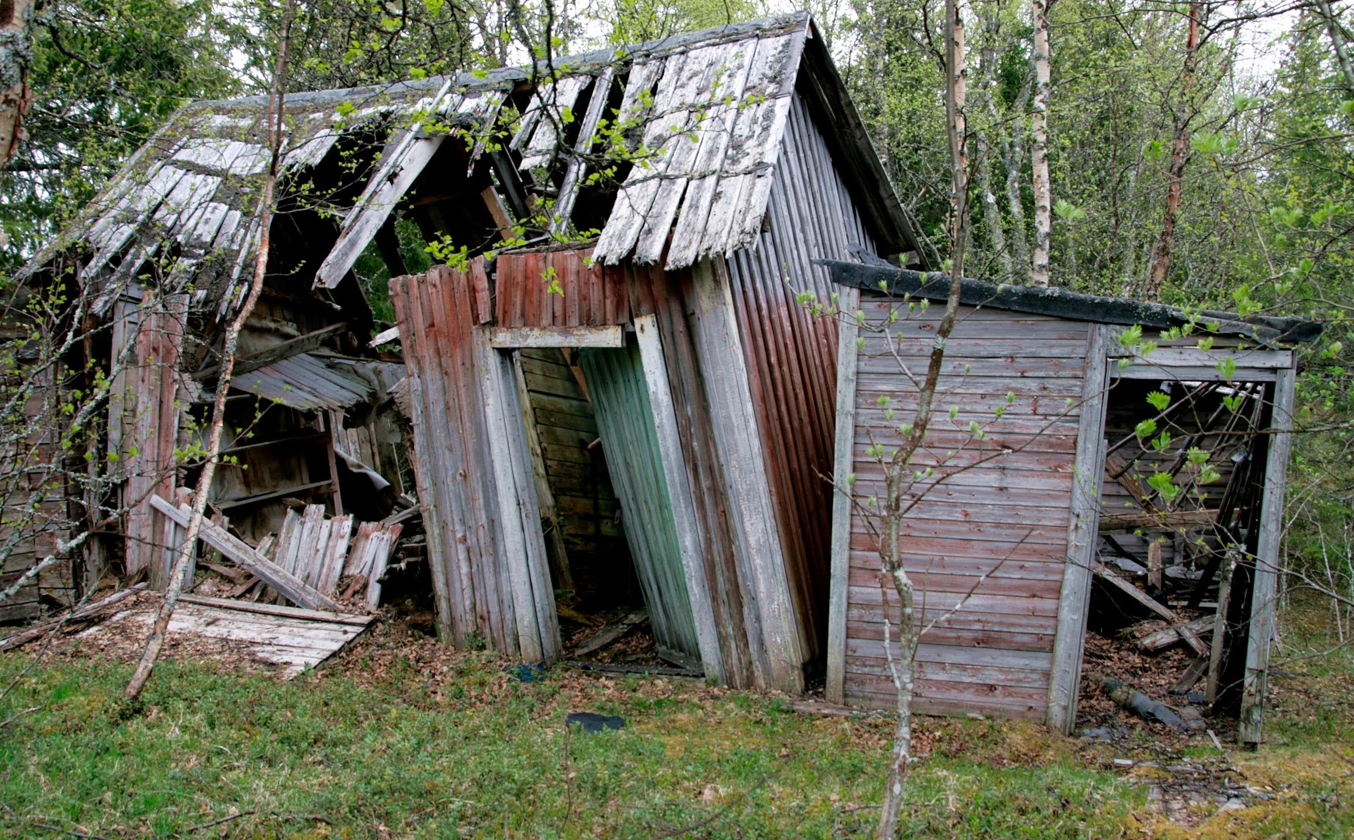 gartenhaus abbauen: so gelingen abriss & entsorgung