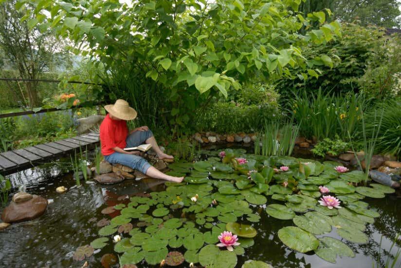 Wasseroase Im Garten: Alles Rund Um Die Teich Gestaltung