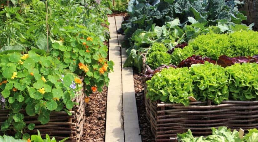 Gartenhaus kleingarten