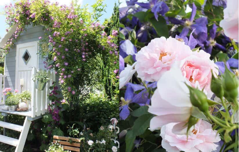 Außergewöhnlich Romantischer Garten: Gestaltungsideen von Bloggerin Susan #WP_26