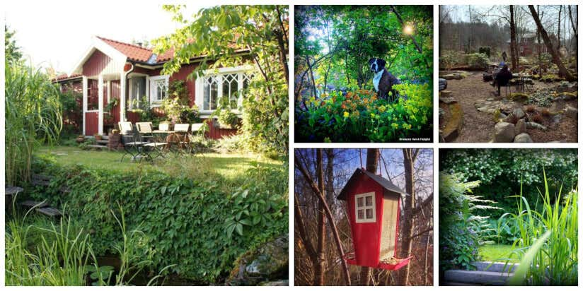 Minimalismus, Natürlichkeit Und Nutzen: So Verleihen Sie Ihrem Garten  Skandinavisches Flair