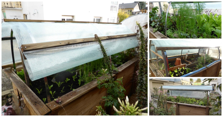 Vom Hochbeet Zum Mini Gewachshaus Dach Selber Bauen
