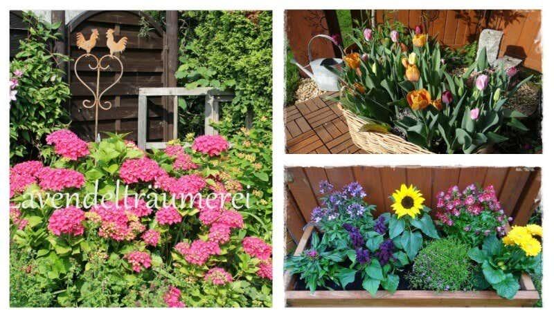 Blumenbeet Anlegen Traum Ideen Fur Ihr Gartenparadies