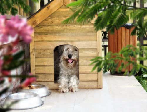 sonnenschutz f r ihre terrassen berdachung so geht s. Black Bedroom Furniture Sets. Home Design Ideas