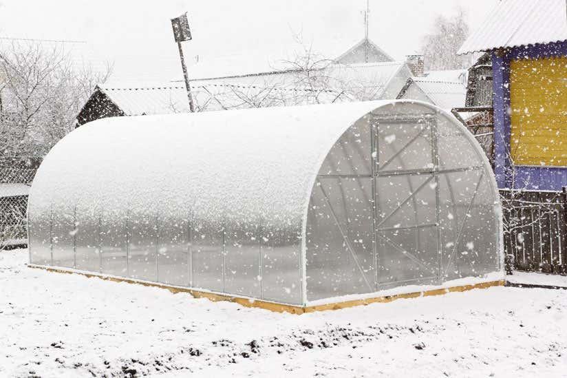 Gewachshaus-im-Winter